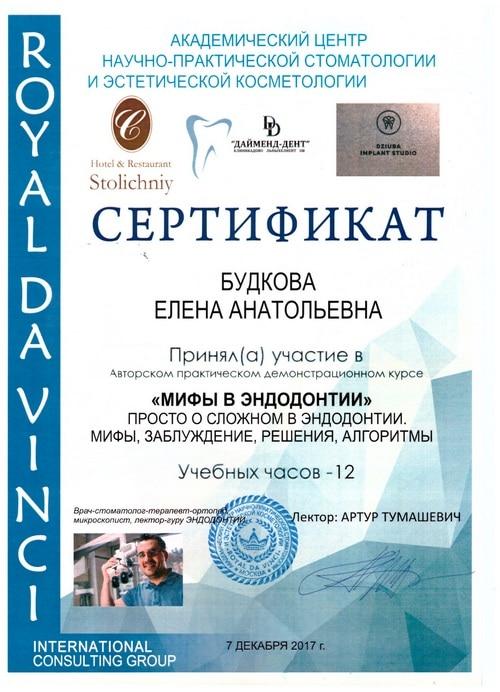 Будкова Елена сертификат 2