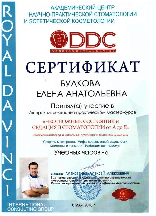 Будкова Елена сертификат 1