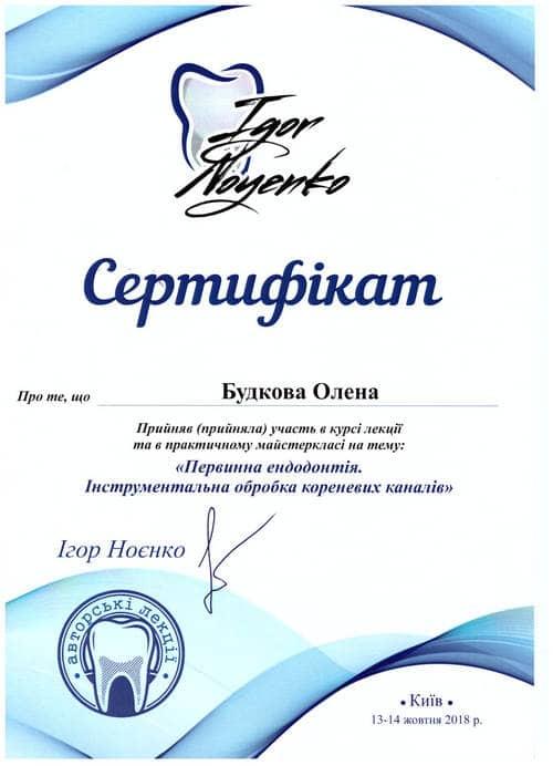 Будкова Елена сертификат 3